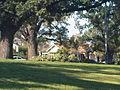 Princes Park, Parkville.jpg
