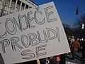 Protesti 25.02.2014 (12781713903).jpg