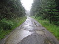 Puddles on the track - geograph.org.uk - 1388259.jpg