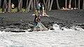 Punalu'u Beach, Pahala (504430) (23821885485).jpg