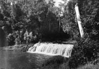 Queensland State Archives 1285 Malanda Falls c 1935.png
