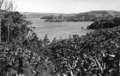 Queensland State Archives 2022 Terranora Lakes from Bilambil Road Tweed Heads c 1934.png