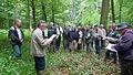 Réunion CSENPC-ONF 2012 en forêt de Mormal (Avesnois).JPG