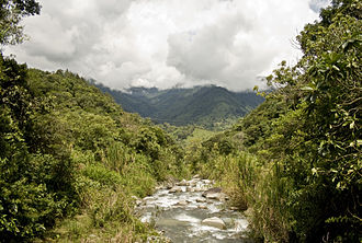 San José Province - Blanco River, county of Pérez Zeledón. Most rivers in the province of San José are shallow, narrow and often run through mountainous terrain, making them impossible to navigate.