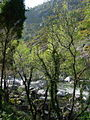 Río Tambre GDFL200307.JPG