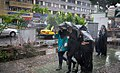 Rainy day of Tehran - 29 April 2018 29.jpg