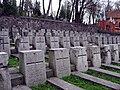 Rasų kapinės (3).jpg