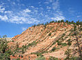 Red Cliff in Zion National Park.jpg