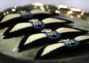 No. 39 Squadron RAF - RAF Remotely Piloted Air System (RPAS) 'Wings', which differ only slightly from the current RAF pilot badge by having blue laurel leaves to identify the specialisation.