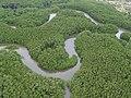 Reserva Ecológica Particular de Sapiranga.jpg