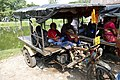 Rickshaw in Sunderbans (37611049764).jpg