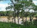 Rio Jaguari - chacara pingueiro - Itapavossu - panoramio - Anderson Martins (19).jpg