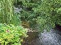 River Alham, Alhampton - geograph.org.uk - 1498535.jpg