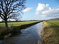 River Brue from Wallyer's Bridge - geograph.org.uk - 1734633.jpg