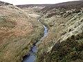 River Dane near Danebower Quarries - geograph.org.uk - 1571737.jpg