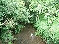 River Dore - geograph.org.uk - 206246.jpg