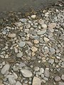 River side pebbles and rocks.jpg