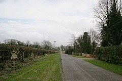 Road in Palestine (Hampshire) - geograph.org.uk - 144789.jpg