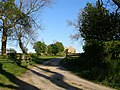 Road to Lovesome Hill Farm - geograph.org.uk - 418723.jpg