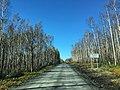 Road to Tanana Dedication (29271373861).jpg