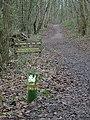 Robin Hood Way in Bestwood Country Park - geograph.org.uk - 661589.jpg