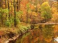 Rock Creek at Rolling Meadow Bridge - Flickr - treegrow.jpg