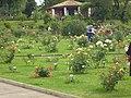Roseto-di-roma-capitale---sito-di--il-cimitero-ebraico--dal-1645-fino-al-1934 9005796993 o 32.jpg