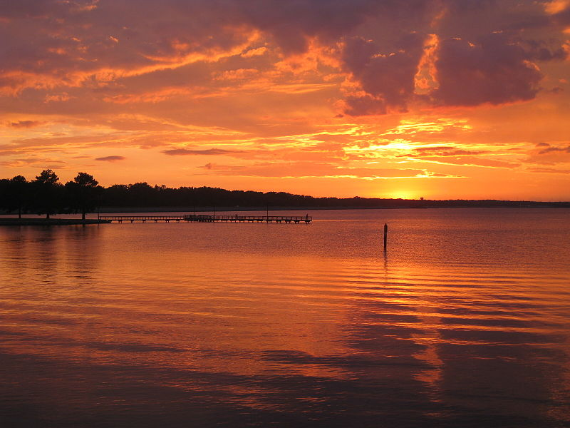 1000 images about mississippi the land mass between nola for Ross barnett fishing report