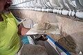 Rotunda Interior Restoration Work - June 2016 (28592059255).jpg