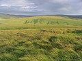 Rough hill grazing - geograph.org.uk - 522287.jpg