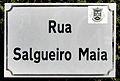 Rua Salgueiro Maia by Henrique Matos 02.JPG