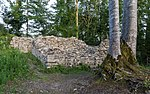 Altenburg castle ruins