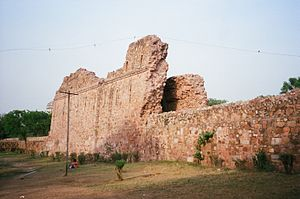 Shahpur Jat - Ruins of Siri Fort wall.