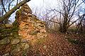 Ruiny dworu obronnego w Miedznej 02.jpg