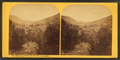 Runaway Pond, Glover, Vt, from Robert N. Dennis collection of stereoscopic views.png