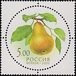 Russia stamp 2003 № 882.jpg