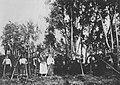 Russischer Photograph - Landarbeiterinnen und Landarbeiter (Zeno Fotografie).jpg
