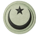 SANDF Qualification Chaplain Muslim badge embossed.png