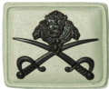 SANDF Qualification PT Instructor Crossed Swords badge embossed.png