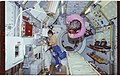 STS065-206-003 - STS-065 - Various views of STS-65 crewmembers working in the Spacelab module - DPLA - 8b3e02a6a4b07cf9e1c836f387f85afc.jpg