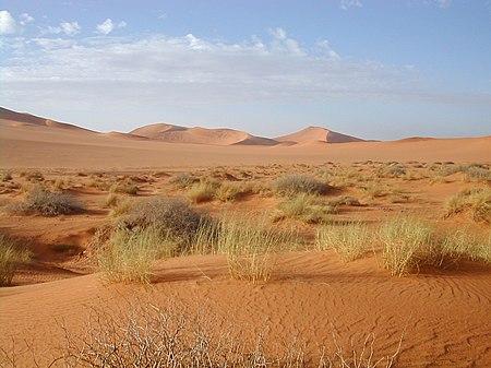 Anialwch y Sahara