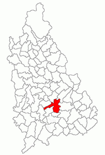 Sălcioara, Dâmbovița Commune in Dâmbovița, Romania