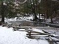 Salt Springs State Park (3283868143).jpg