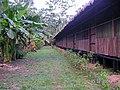 Sandoval , Tambopata - panoramio (22).jpg