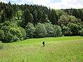 Schafbachtal, Eifel, Germany - panoramio.jpg