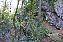 Fil pour Onan Peuplu 220px-Schmerling_Caves02