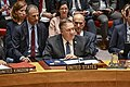 Secretary Pompeo Address UN Security Council on Venezuela (39917777763).jpg