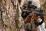 Securing the Perimeter (9689170738).jpg
