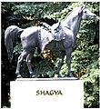 Shagya Sculpture 0001.jpg