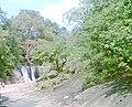 Shenbagathoppu Falls.jpg
